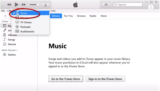 make sure you select the MUSIC category from the drop-down menu